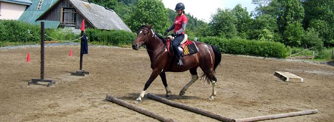 praca z koniem